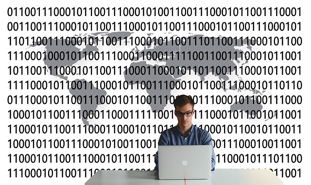 What Does a Data Scientist Do